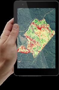 software de monitoramento de florestas